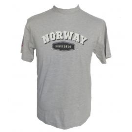 Norway Since 1814 Grey